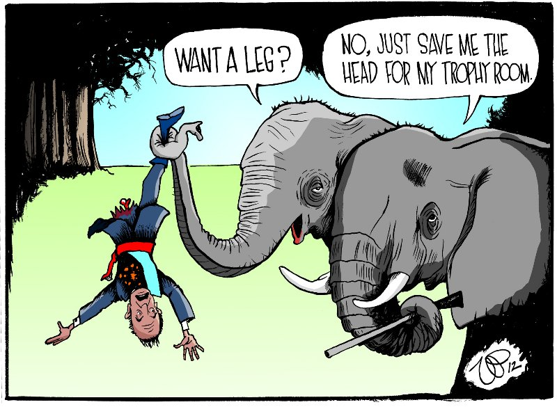 elephants-kill-king-juan-carlos