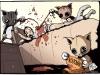 cat-scratched